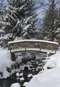 Snow pictures, beautiful pictures of snow in winter I Love Winter, Winter Snow, Winter Christmas, Prim Christmas, Beautiful Places, Beautiful Pictures, Beautiful Scenery, Fjord, Winter Magic