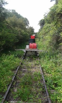 Early days for Awakeri Rail Adventures as they use a trolley and old fashioned man power to clear the Taneatua track in Whakatane New Zealand Self Driving, New Zealand, Trains, Adventure, Adventure Movies, Adventure Books, Train