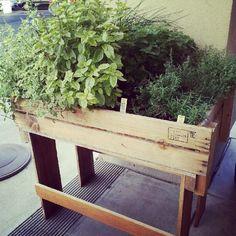 Tumblr - gardening for back health