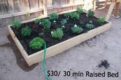 Five Little Homesteaders: Thirty Minute $30 Raised Bed