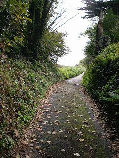 BRIDAL PATH UP FROM TALLAND BAY,Cornwall
