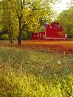 Barn - photography by Jeff Owenby Barn Photography, Autumn Photography, Old Barns, Four Seasons, Country Living, Studios, Lord, Earth, House Styles