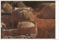 Tibesti, Tchad