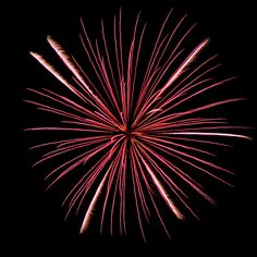 Colorful Fireworks 3 by Cynthia Woods