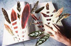 Philosophia: Trying to Find the Reason in The Codex - Naturae 1 Megan Jenkinson Artistic Photography, Nature Photography, Still Life Artists, Photos 2016, Photography Courses, Australian Art, Photomontage, Art Auction, Art History