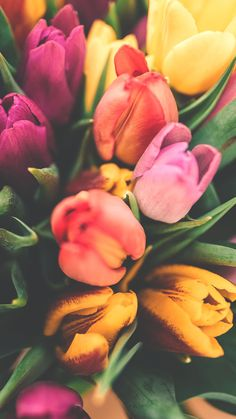12 Pretty Springtime iPhone Wallpapers Spring iPhone Wallpaper by Preppy Wallpapers Iphone Wallpaper Preppy, Iphone 7 Wallpapers, Vinyl Wallpaper, Cute Wallpapers, Iphone Backgrounds, Spring Flowers Wallpaper, Flower Wallpaper, Nature Wallpaper, Beautiful Wallpaper