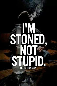 Stoned, not stupid. There IS a difference.