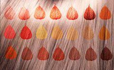 MIKSOLOGIA  : Jak rozrobić i nanieść na włosy hennę lub cassię b...