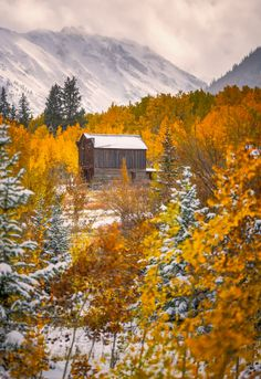 Fall in Ashcroft by Toby Harriman on 500px