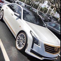 My Cadillac Music Instrumentals by Joe Brown 38 Cadillac Eldorado, Cadillac Escalade, Donk Cars, Dodge Muscle Cars, Cadillac Fleetwood, Exotic Sports Cars, Chevrolet Equinox, Super Sport Cars, Sweet Cars