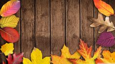 Download Free Autumn Wallpapers for Your Computer