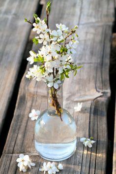 Einfach und wunderschön: blühende Zweige in einer schlichten Glasvase. #homestory #homestoryde #home #garden #table #inspiring #flowers #decoration
