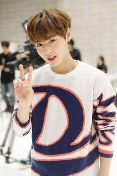 Park Jihoon Wanna One Produce 101 Season 2 Park Jihoon Produce 101, Minions, Park Bo Gum, Cho Chang, Jin Kim, Guan Lin, Produce 101 Season 2, Ong Seongwoo, Child Actors