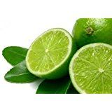 12 Tropical Green Lime Seeds Fruit Heirloom