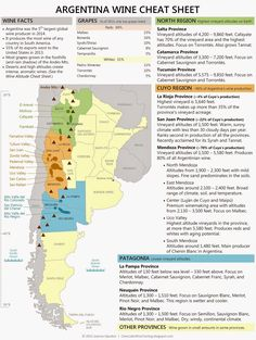 This map shows the different parts of Argentina north and south. Also it shows where there is wine tasting in Argentina. Wine is what most adults drink in their houses with supper. Boot Camp, Wine Infographic, Wine Facts, Wine Chart, Wine Lovers, Chateauneuf Du Pape, Wine Vineyards, Wine Education, Wine Guide
