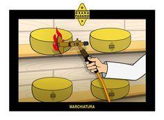 Grana Padano La filiera si conclude con il marchio a fuoco che certifica che quello è il vero Grana Padano!