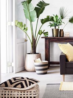 Modern living room with jute throw pillow and indoor plants on Thou Swell @thouswellblog