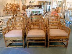 6 Burnt Bamboo Brighton Style Arm Chairs