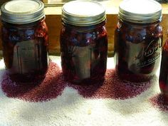 The blueberries are ripening late this year. Last year the first pick was ready by the time I got home from Portland ; this year, I just fi. Canning Food Preservation, Preserving Food, Canned Blueberries, Canning Recipes, Preserves, Pickles, Blueberry, Mason Jars, Extreme Heat