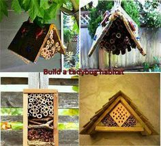 """A Nice DIY Project: """"Build You Own Ladybug House""""  See more DIY projects ---> http://healthandnaturalliving.com/diy/"""