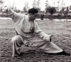 Yang Style Tai Chi Chuan,   Snake Creeps Down, Single Whip Lower Posture,   Grand Master Tung Hu Ling