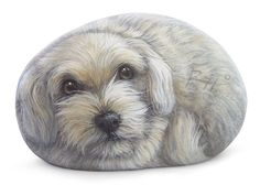 I want to do this with a dachshund and a long rock! Try to paint Miles? Mandala Painting, Pebble Painting, Pebble Art, Stone Painting, Rock Painting, Painted Rock Animals, Hand Painted Rocks, Pet Rocks, Dog Paintings