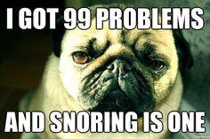 pug problems
