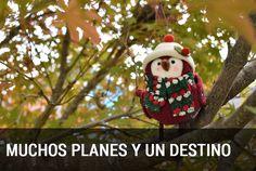Esta navidad tenemos mucho planes en un sólo destino, la Región de Murcia. Consulta todo lo que podrás hacer para no aburrirte ni un sólo minuto.