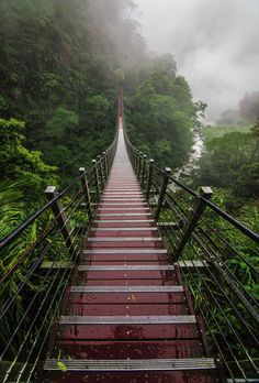 """ponderation: """"Into The Heart Of Taiwan by gnbphotos """""""