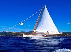 """Alcyon"" - Calanques Classiques 2014 Classic Wooden Boats, Classic Yachts, Cool Boats, Sailing Ships, Mullets, Sea, Sailboats, Beautiful, Cats"