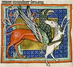 Griffin with prey    Oxford Ms. Bodley 764. Looks like the artist might have been inspired by Celtic themes, if not strictly Arthurian ones.