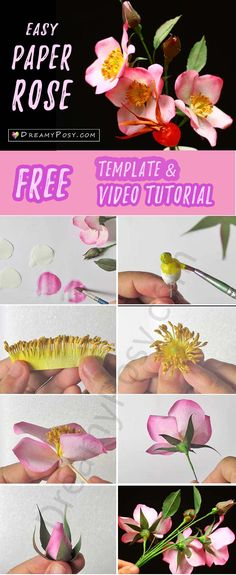 paper rose, free template, paper flower, paper flower, paper flowers, flower tutorial,  #paperflower #paperrose