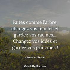 Faites comme l'arbre, changez vos feuilles et gardez vos racines... Changez vos idées et gardez vos principes ! - Proverbe tibétain #citation #citationdujour #proverbe #quote #frenchquote #pensées #phrases #french #français