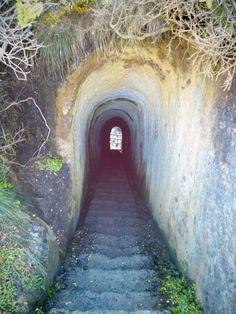 Tunnel beach, Dunedin NZ