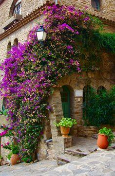 Bloom City Bormes les Mimosas, France