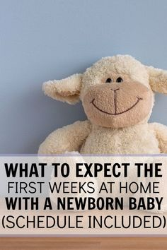 Curious about what your life will look like when your baby arrives? See what to expect the first weeks at home with your newborn baby! Schedule Included !