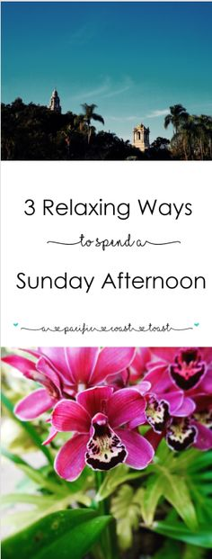 3 Relaxing Ways to Spend a Sunday Afternoon - on A Pacific Coast Toast
