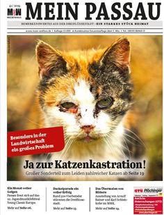 Alle 14 Tage neu! Die Zeitung für die Dreiflüssestadt Leiden, Content, Passau, River, Newspaper, City