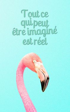 beautiful phrase on life, lock iPhone screen in blue with flamingo pattern, green letters on blue background rnrnSource by gprebeka Gif Disney, Flamingo Pattern, Beautiful Mind, Photo Quotes, Healthy Foods To Eat, Quote Of The Day, Videos, Life Quotes, Harry Potter