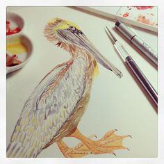 pelican by @marinabarbato #mywork #watercolor #watercolorpainting #surfacedesign
