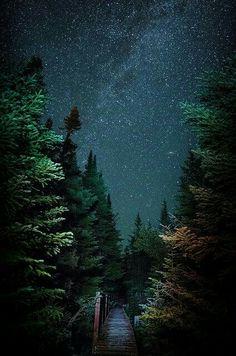 """""""Notte che arriva  e il mio cuore festeggia  la gioia di sapere  che il giorno è andato,  ma benedetto.  Che in ogni passo  sentivo Dio al mio fianco  e la gioia del suo santo spirito pulsando forte nel mio essere.  In cambio ...  ogni gesto mio  è stato di gentilezza ...  Mostrando tutta la grandezza ... del Dio che vive in me.""""  Elliana Garcia"""