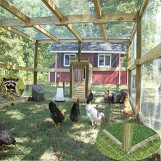 Building A DIY Chicken Coop If you've never had a flock of chickens and are considering it, then you might actually enjoy the process. It can be a lot of fun to raise chickens but good planning ahead of building your chicken coop w Chicken Coop Designs, Easy Chicken Coop, Chicken Pen, Portable Chicken Coop, Chicken Coup, Chicken Garden, Chicken Chick, Backyard Chicken Coops, Backyard Farming