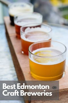 Here are the top Edmonton breweries for Craft Beer including a map. Best Craft Beers, Canadian Travel, Visit Canada, Alberta Canada, Road Trips, Wine Recipes, Brewery, Adventure Travel