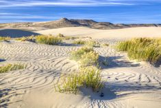 1. The Red Desert: A Desert Oasis In Wyoming