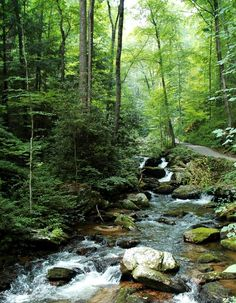 North Georgia stream....this looks so much like the Mt Yonah, Cleveland, Helen area