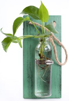 Hanging Wall Vases Solid Wooden Board No need more cumbersome ...
