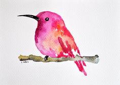 Red Pink Hummingbird - ORIGINAL Watercolor painting / Abstract bird 6x8 inch  Love this etsy shop artist
