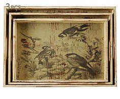 Conjunto de bandejas pássaros