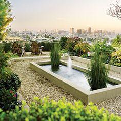 San Francisco garden with a stellar view