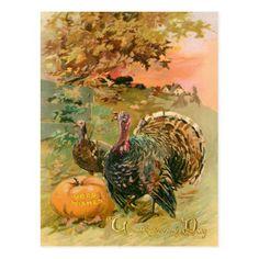 Vintage Thanksgiving Turkeys and Pumpkin Postcard